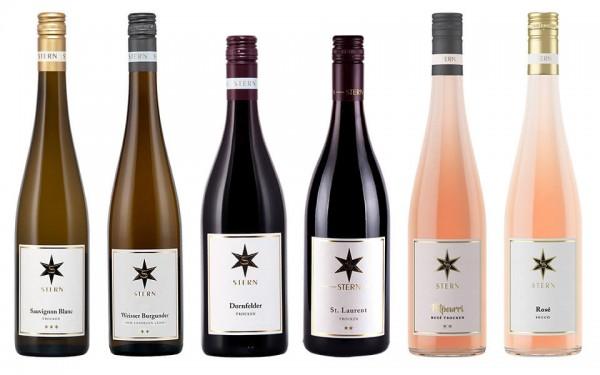 WeinPaket Weingut Stern 6x0.75l